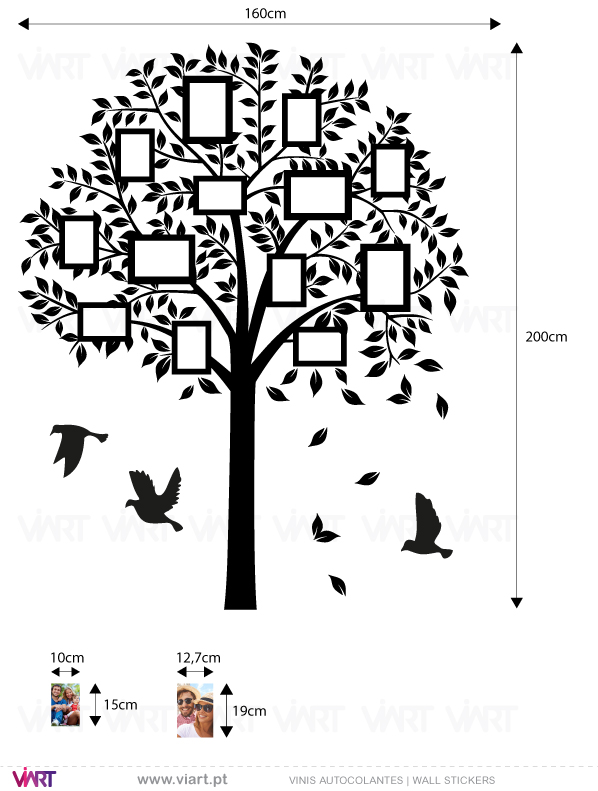 Viart - Vinis autocolantes decorativos - Árvore para fotografias com aves - medidas