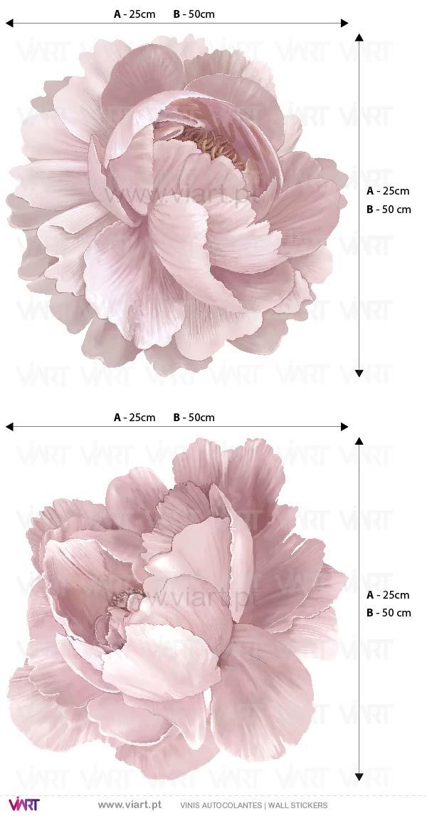 Viart - Vinis autocolantes decorativos - Peónias! Beleza única em Rosa! Flores em Vinil Decorativo!- Medidas